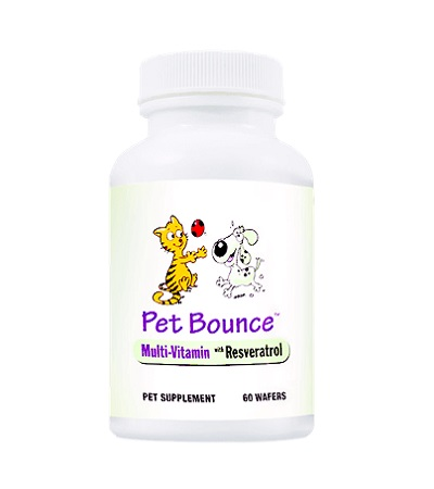 Pet Bounce Supplements