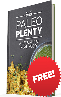 Paleo Plenty Review