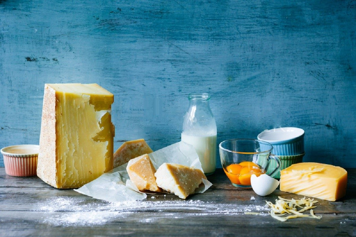 Why Adding Dairy to Your Diet Can Increase Fat Loss?